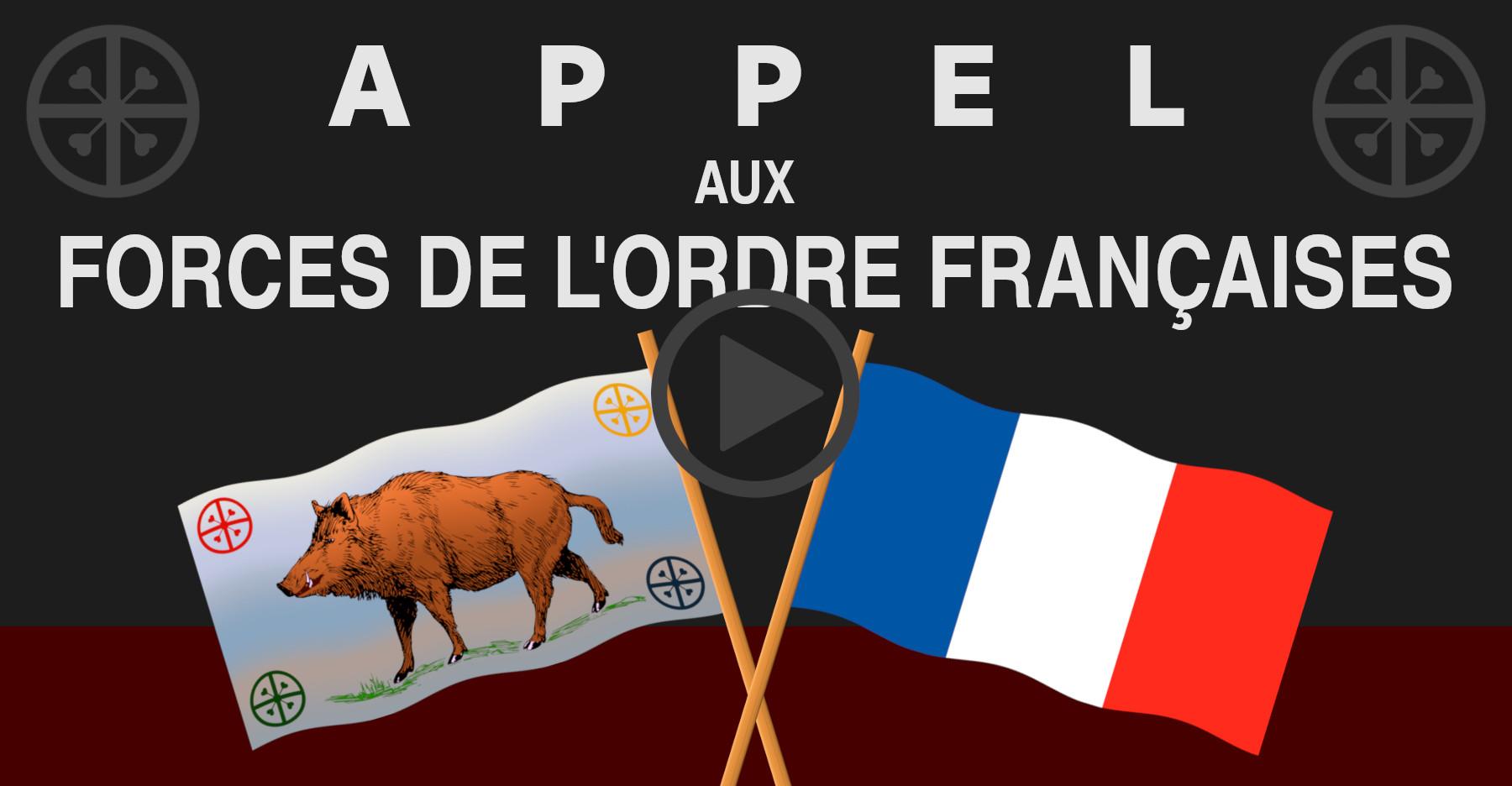 drapeau gaulois franÇais